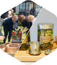 Potager & Aromates