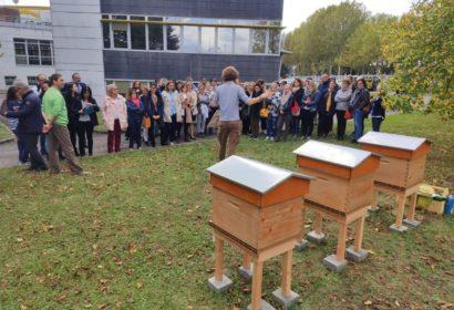 Oise : Beecity veut essaimer des ruches dans toutes les entreprises