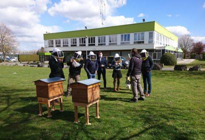 Installation de ruches chez Api Restauration !
